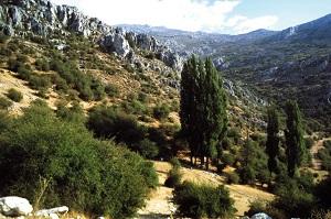 Wanderungen Sierra Mágina